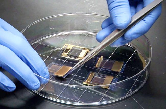 transparent-and-flexible-lithium-ion-battery